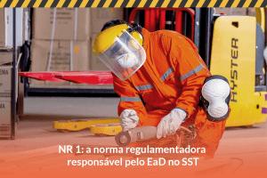 NR 1: a norma regulamentadora responsável pelo EaD no SST